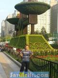 dating BeiJing, China